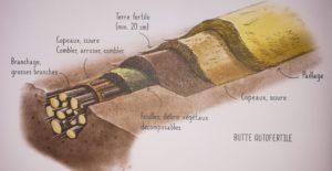 Butte auto-fertile